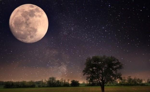 חידת הירח - פתרון (צילום: dukehealth.com)