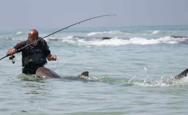 תיעוד: כרישים בחוף בחדרה, אנשים הקיפו והתקרבו