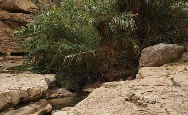 נחל פרת (ואדי קלט) (צילום: תיירות בנימין)