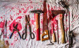 עינויים (צילום: SINEIRA STUDIO, Shutterstock)