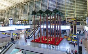 שדה התעופה העמוס בעולם (צילום: Markus Mainka, shutterstock)
