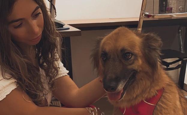 להגיע עם הכלב לעבודה - מתחם URBAN PLACE (צילום: אורית בן חיים)