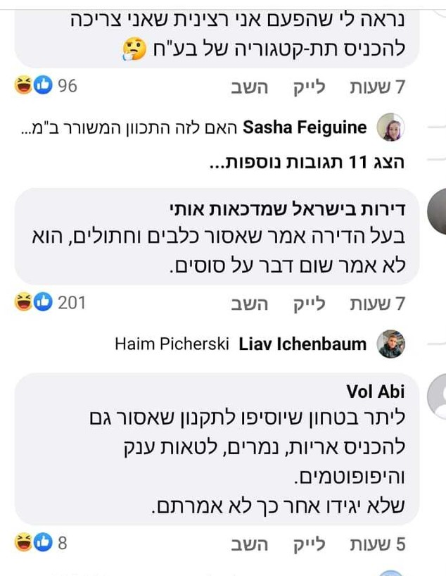 סוס נכנס למעלית בבניין בתל אביב (צילום: facebook)
