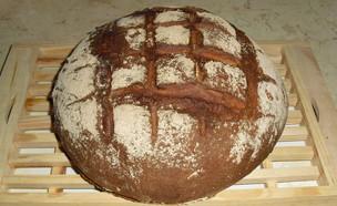 לחם מקמח מלא ושיפון - מוכן (צילום: אביבה פיבקו)