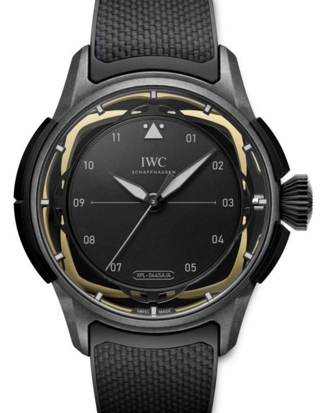 """IWC (צילום: יח""""צ)"""