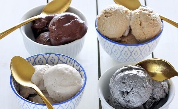 גלידה טבעונית בטעמים (צילום: ענבל לביא)