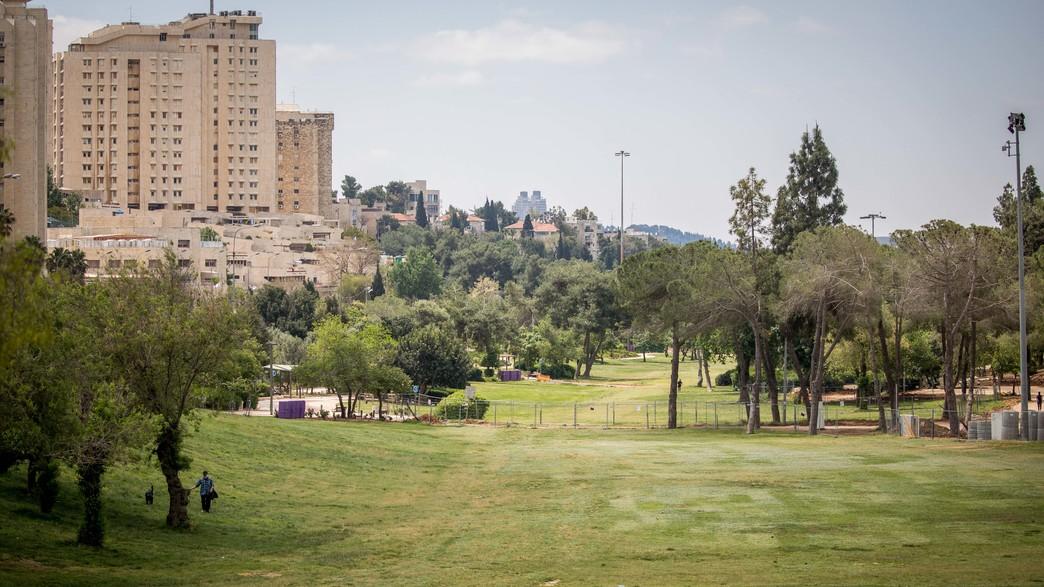 גן סאקר  (צילום: anna HymansonFLASH90)