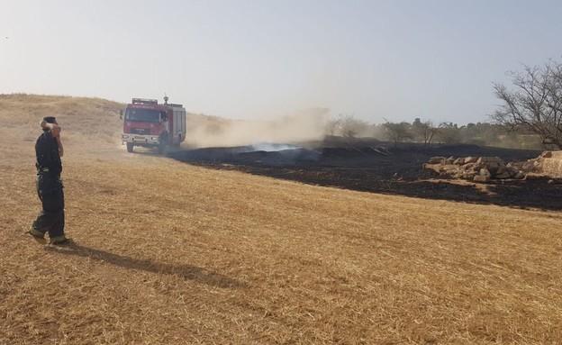 אירועי שריפה ביערות עוטף עזה (צילום: משה ברוכי סייר ביערות קק״ל)