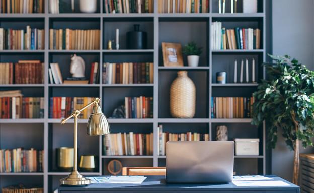 ארון ספרים (צילום:  Undrey, shutterstock)