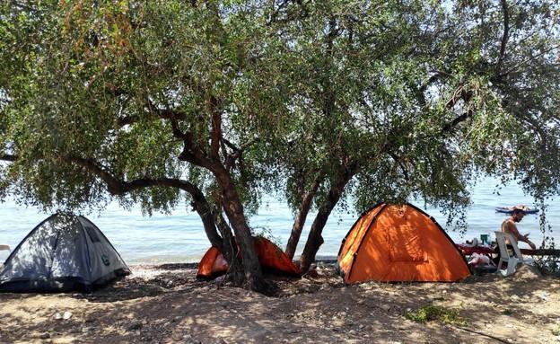 חוף גופרה (צילום: טלי בר, איגוד ערים כנרת)