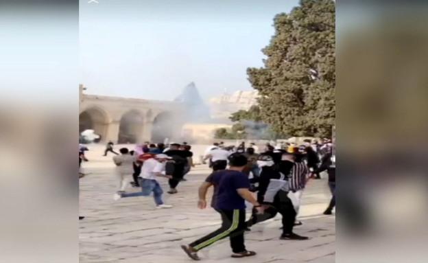 מתפרעים במהומות בהר הבית