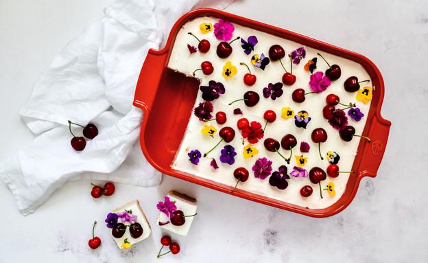 עוגת וניל קוקוס עם קרם גבינה ופירות (צילום: שרית נובק - מיס פטל, אוכל טוב)