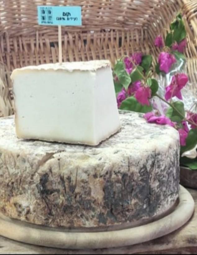 דורון מן הטבע - גבינת תום (צילום: אבי וולמן, יחסי ציבור)