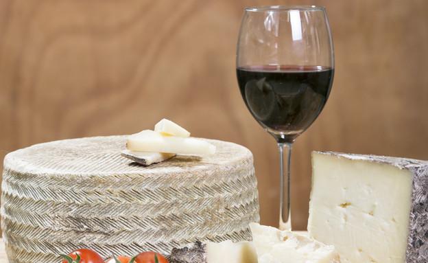 מחלבת בארי - גבינת סחף (צילום: יהל בטיטו, יחסי ציבור)