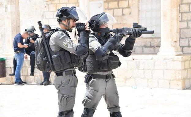 כוחות משטרה ומשמר הגבול בהר הבית (צילום: דוברות המשטרה)