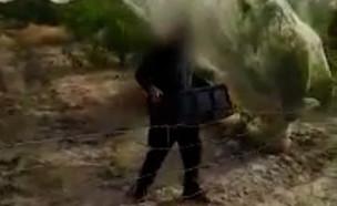 גונבים ממטעים לאור יום (צילום: משטרת ישראל)
