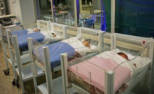 תינוקיה בבית חולים בטורינו, איטליה (צילום: MikeDotta, shutterstock)