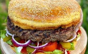 המבורגר משפחתי (צילום: תומר אומנסקי)