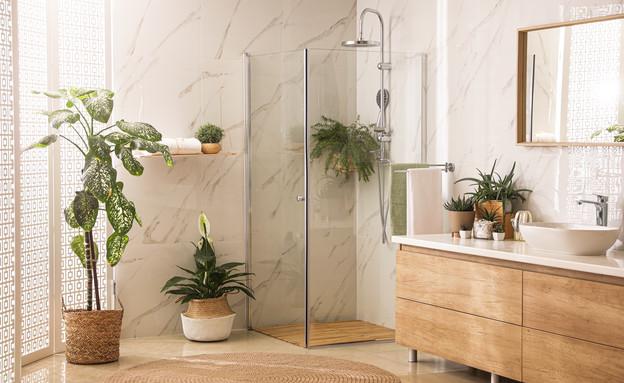חדר רחצה עם מקלחון (צילום:  New Africa, Shutterstock)