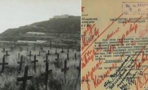 המסמך שחושף את זוועות מחנה הריכוז באיי התעלה (צילום: twitter)