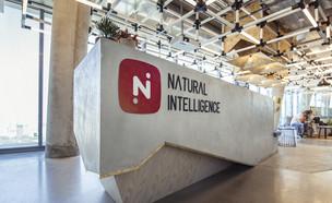 משרדי נטורל אינטליג'נס (צילום: באדיבות נטורל אינטליג'נס)