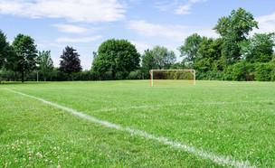 מגרש כדורגל (צילום: sharpshutter, shutterstock)