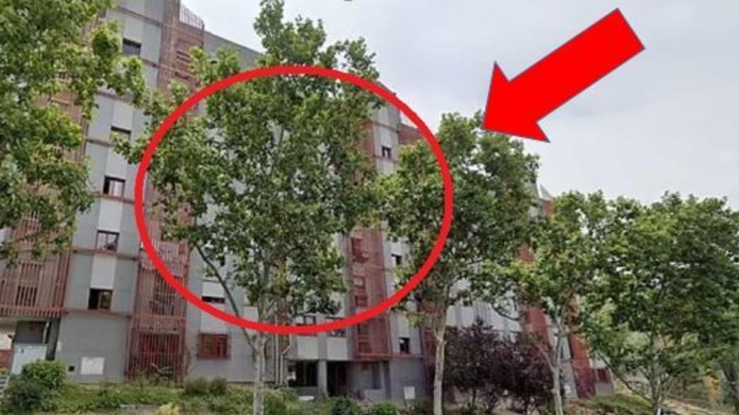 קשישה נמצאה מתה בדירה במדריד (צילום: twitter)