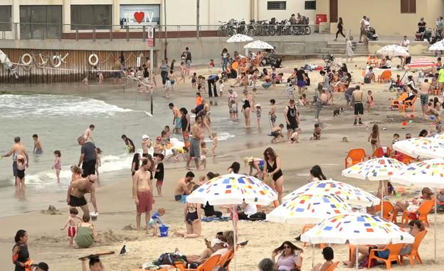 חופי יוקרה: המחירים המופקעים בחופי הים  (צילום: החדשות12)