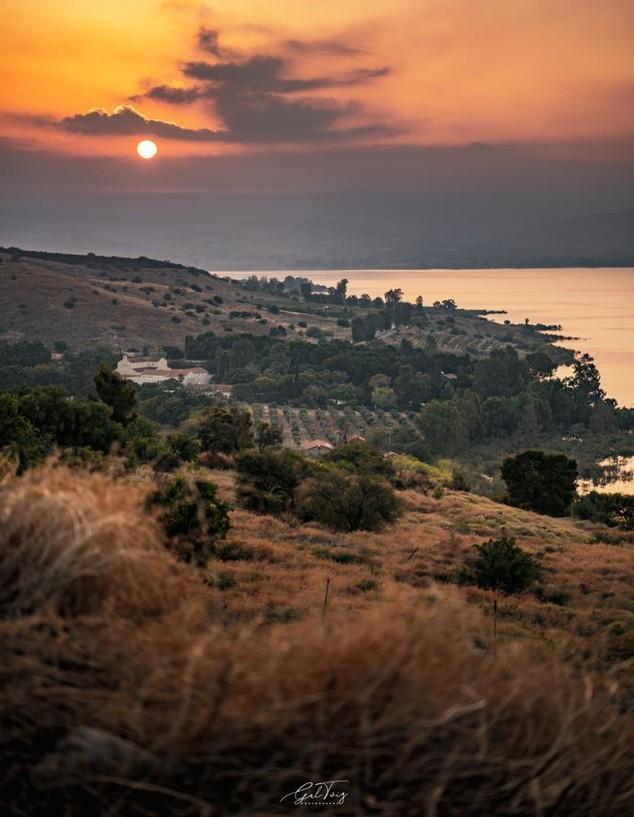 זריחה (צילום: גל טוויג)