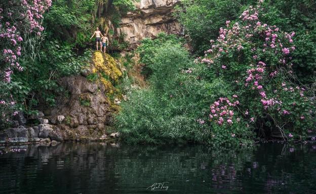 בריכת ג'דען (צילום: גל טוויג)