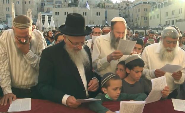 תפילה בכותל נגד הממשלה (צילום: החדשות 12, החדשות12)