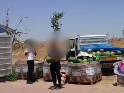 האבטיח הכי יקר בישראל (צילום: משטרת ישראל)