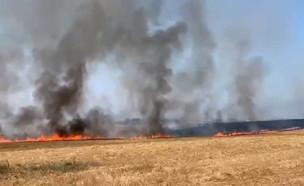 שריפה בניר עם (צילום: החדשות 12, החדשות12)