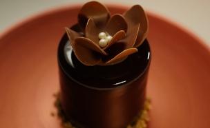 שישה גוונים של שוקולד (צילום: שחר רזניק, קשת 12)