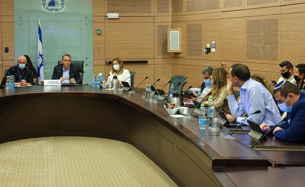 חברי ועדת החוקה של הכנסת (צילום: נועם מושקוביץ, דוברות הכנסת)