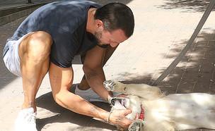 מייקל לואיס (צילום: פול סגל)