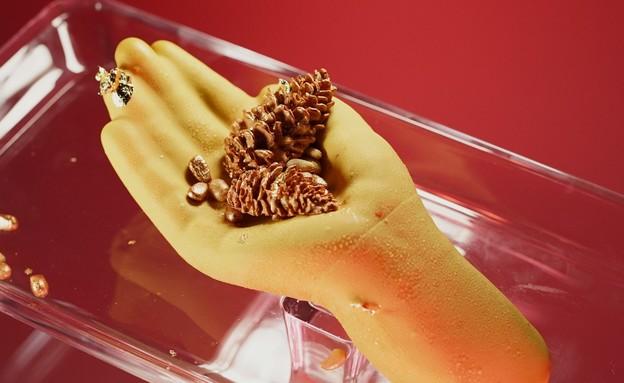 הקינוח המושלם: באלה הידיים, הקינוח של רחלי ורניר (צילום: שחר רזניק, קשת 12)