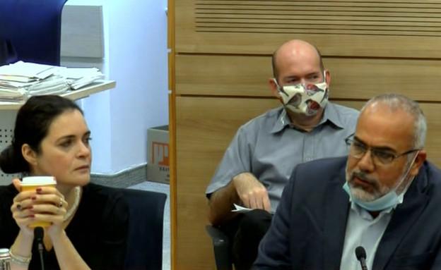 ועדת חוץ וביטחון (צילום: ערוץ כנסת)