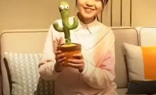 הקקטוס פולני (צילום: magmei, Youtube)