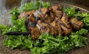 דריה מסעדה חדשה הילטון הלל תווקולי  (צילום: אוהד קב, יחסי ציבור)