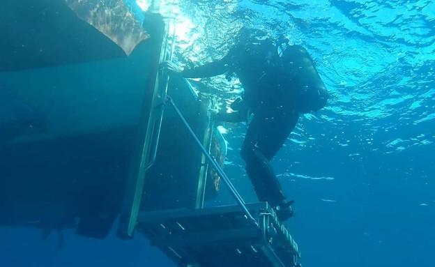 צוללני הקומנדו הימי של אירן באימון