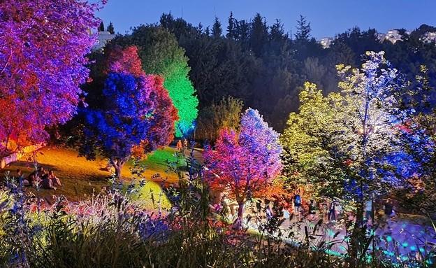 אירועים בתשלום 2021 תאורת ממלכת השלג בגן הבוטני קיץ 2021 (צילום: תום עמית)