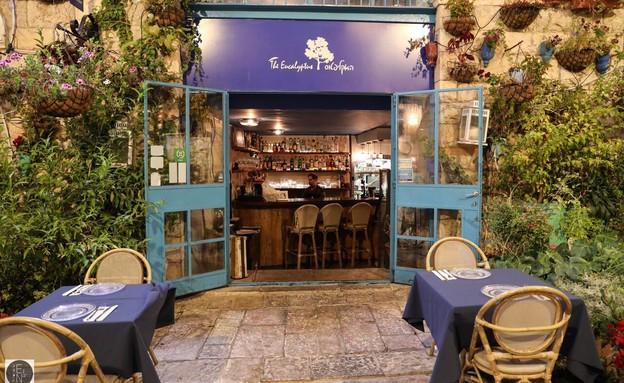 מסעדת האקליפטוס (צילום: אתי נמיר, יחסי ציבור)