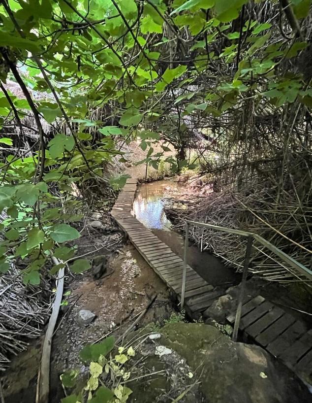 פארק הנהר הנעלם (צילום: ארז דגן)
