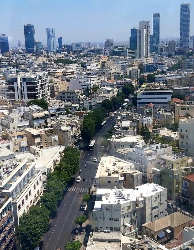 אלנבי (צילום: אריאלה אפללו)