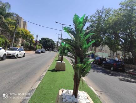 עצים מפלסטיק בפתח תקווה (צילום: מוניקה כהן)