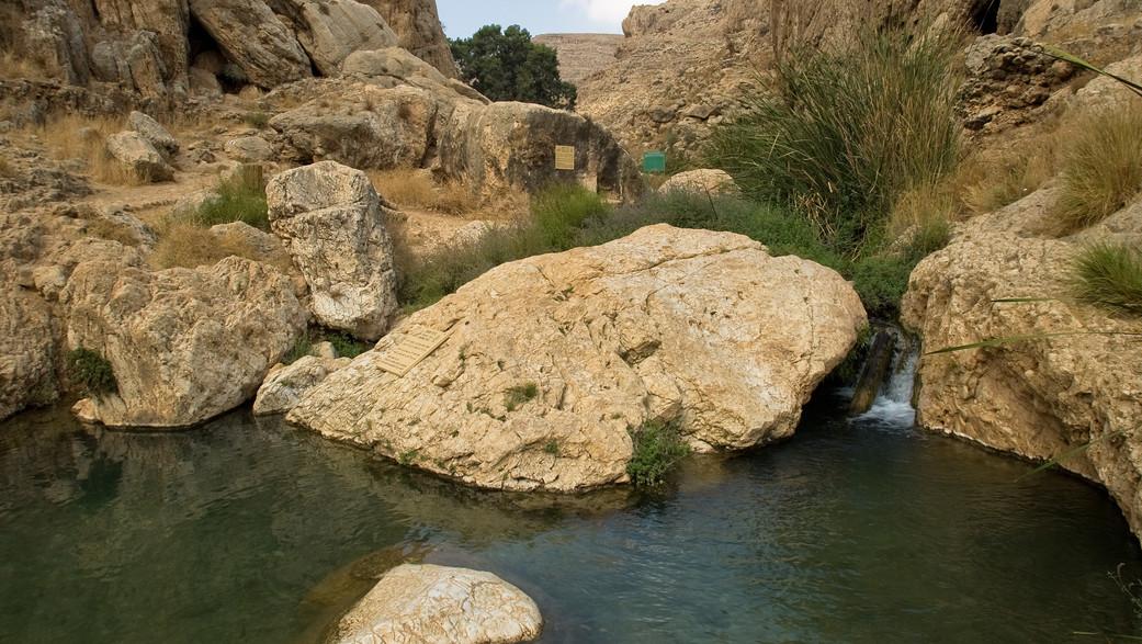 נחל פרת (צילום: דורון ניסים)