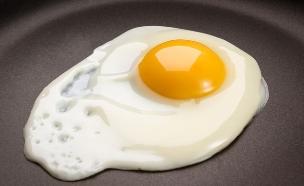 ביצת עין מושלמת (צילום: ShutterStock)