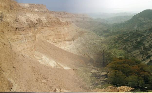 מחקר על מכרסם שחי במדבר יהודה לפני 100 אלף שנים (איור: איגנסיו לזגבסטר)