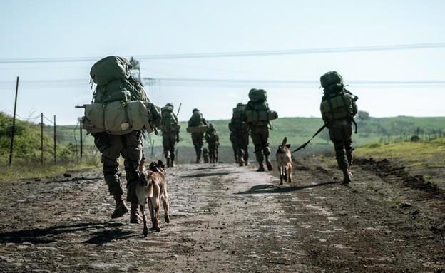 """הלוחמים (צילום: דובר צה""""ל )"""